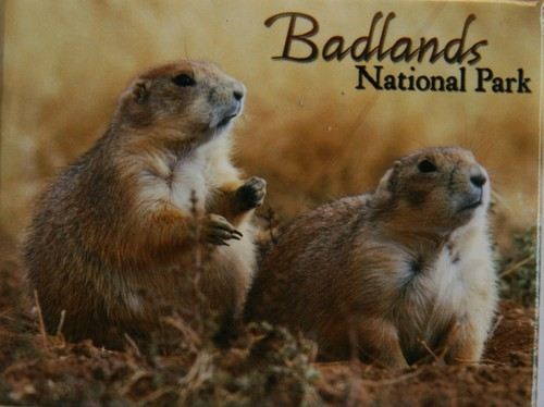 Badlands Prairie Dog Magnet