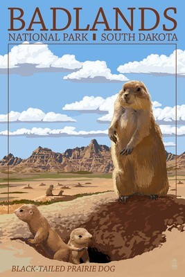 Vintage Prairie Dog Items
